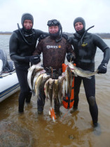 Чемпионат Ярославской области по подводной охоте